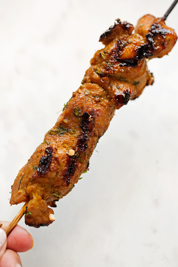 Thai Chicken Satay with Peanut Dipping Sauce - an easy appetizer or a main meal! Serve it with my peanut dipping sauce and everyone is going to love this CHICKEN ON A STICK! #chickensatay #peanutdippingsauce #thaichicken #thaifood | Littlespicejar.com