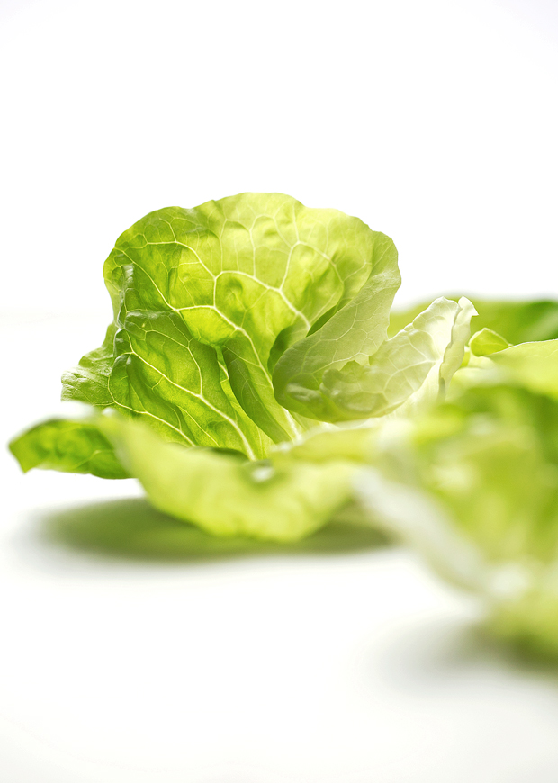 Orange Chicken Lettuce Wraps - orange chicken flavored filling in these protein packed lettuce wraps! Healthy, easy AND delicious! #mealprep #lettucewraps #orangechicken | Littlespicejar.com