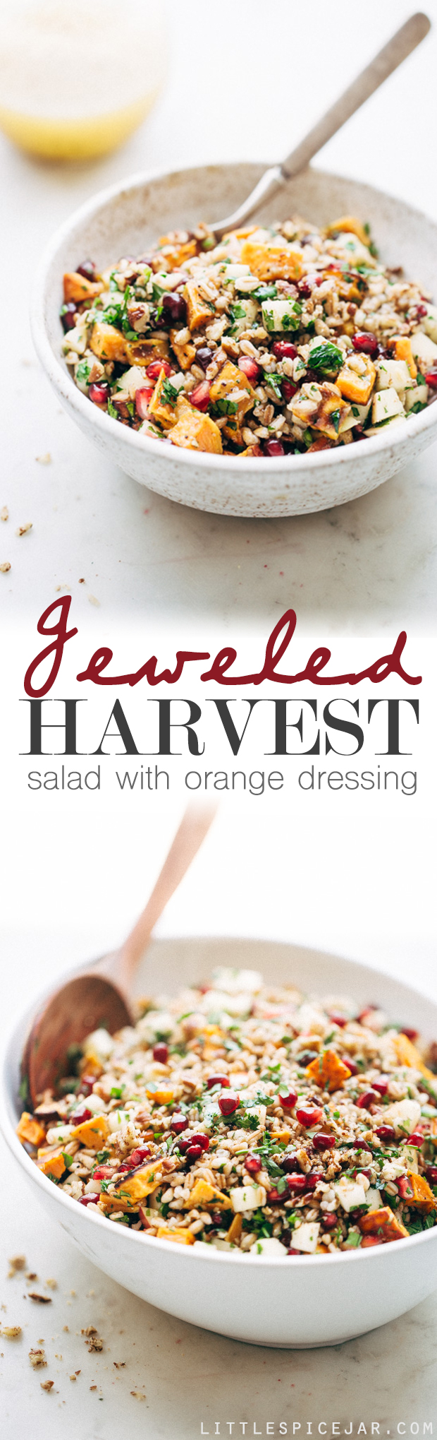 Jeweled Harvest Salad with Orange Dressing - A simple salad with tons of topping possibilities, drizzled with a simple orange dressing that makes the whole thing pop! #harvestsalad #salad #autumnsalad | Littlespicejar.com
