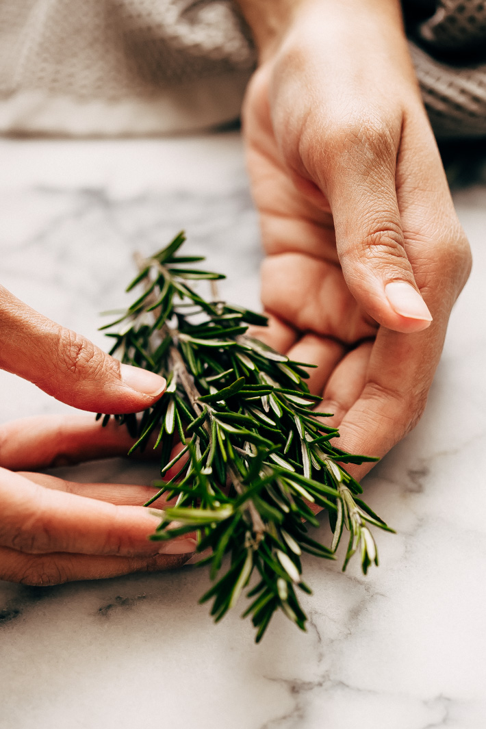 hands holding fresh rosemary