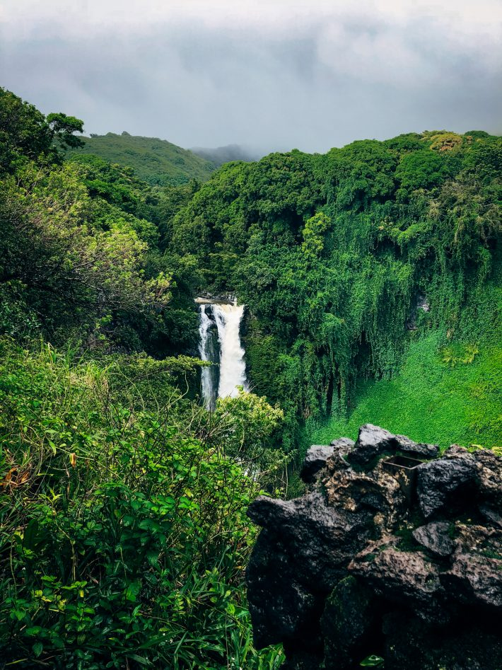 Maui in a Heartbeat - Learn all the fun things to do and where to eat if you're planning a vacation on Maui! | Littlespicejar.com