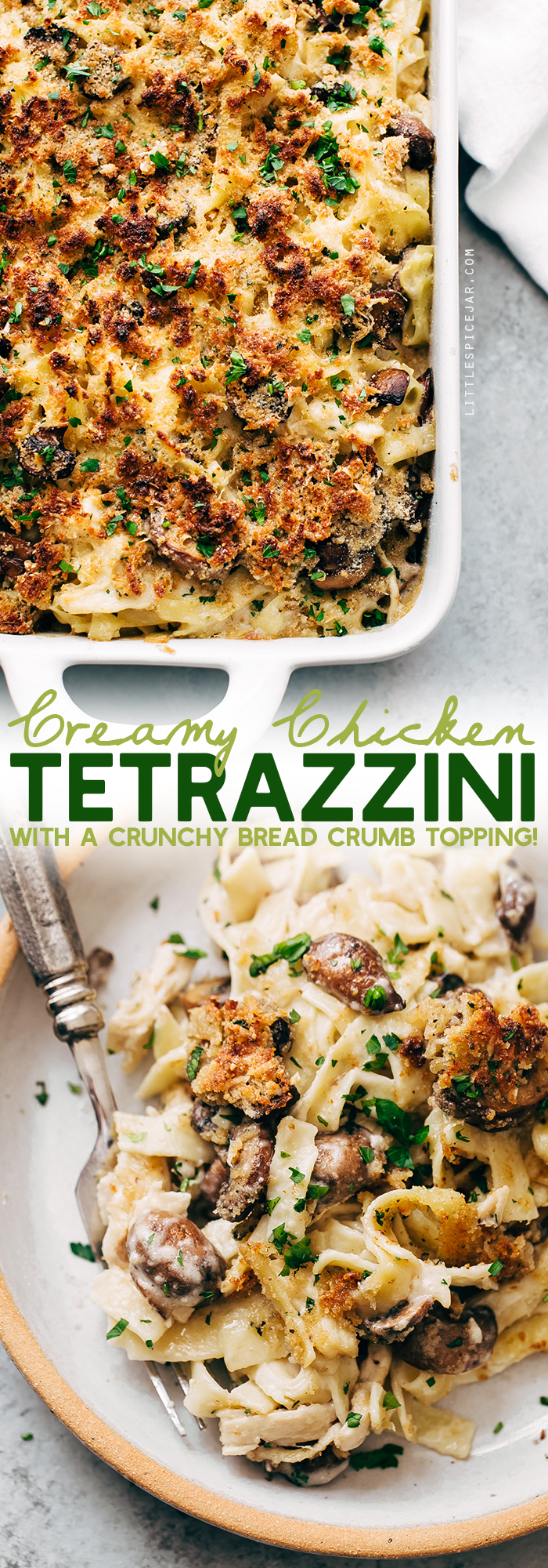 Cozy Creamy Chicken Tetrazzini - learn how to make the best chicken tetrazzini ever! A creamy white sauce with tons of shredded chicken, mushrooms, and cheese! #chickentetrazzini #turkeytetrazzini #noodlebake #casserole #easter #tetrazzini | LIttlespicejar.com