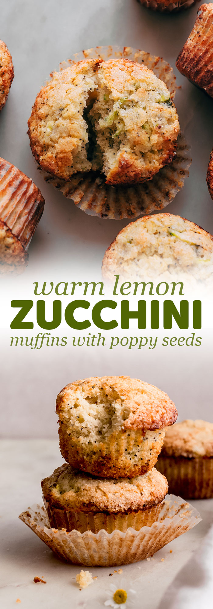 Warm Lemon Zucchini Muffins - these muffins are tender as can be and loaded with spices and zucchini. So good you'll never make any other zucchini muffin recipe again! #zucchinimuffins #lemonzucchinimuffins #lemonpoppyseedmuffins #muffins #baking | Littlespicejar.com
