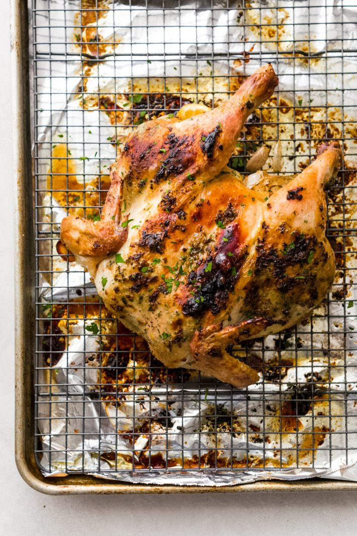 Roasted Herb Butter Spatchcock Chicken (Step-by-Step) - Learn how to spatchcock a chicken and roast it with the most delicious herb butter. This chicken is so easy you'll skip the store bought rotisserie chicken and start roasting your own, weekly! #spatchcockchicken #howto #roastedchicken #chickenrecipe #howtopatchcockachicken #roastedchickenrecipe | Littlespicejar.com