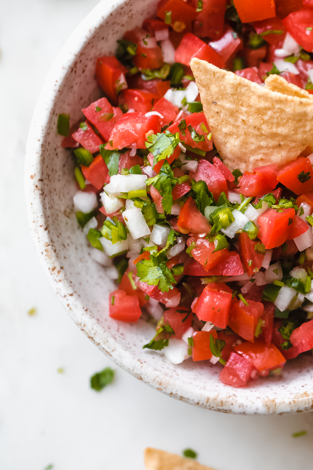close up of bowl to show size of chopped tomato, onions, and cilantro