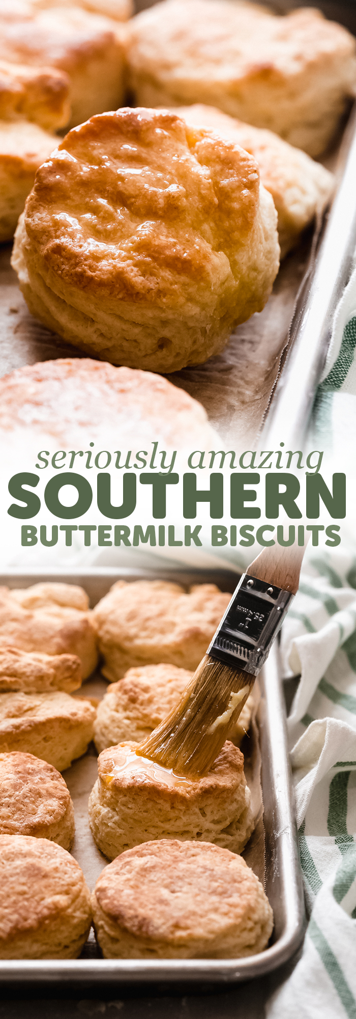 Amazing Southern Buttermilk Biscuits - Learn how to make the BEST buttermilk biscuits with 1 additional ingreident and 1 simple trick! These biscuits are sure to please everyone! #buttermilkbiscuits #biscuits #homemadebiscuits #homemaderolls #dinnerrolls #biscuitrecipe | Littlespicejar.com