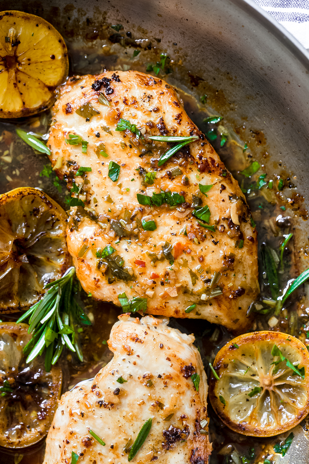 close up of seared chicken breasts with fresh rosemary, parsley, and wilted lemon slices