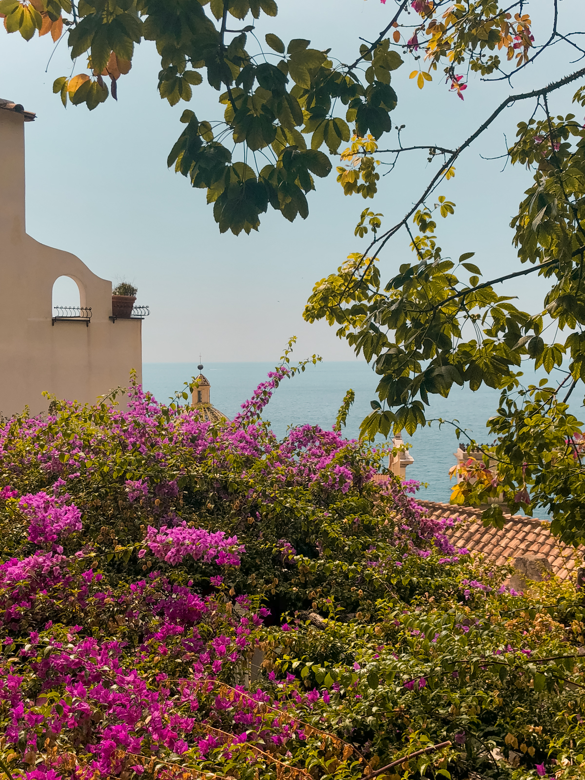 bougainvillea, greenery, and large buildings in Positano