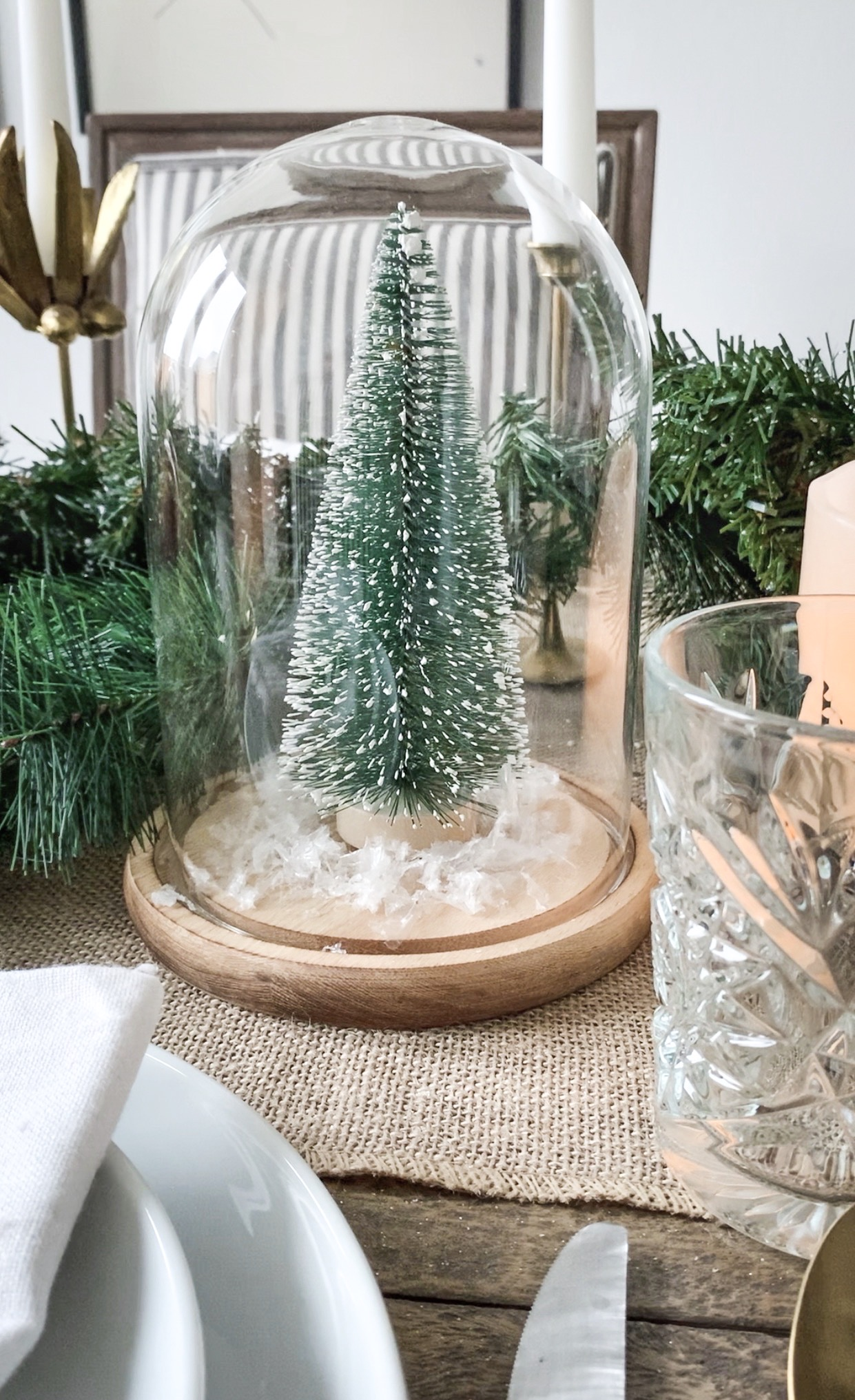 close up of cloche with a snow dusted mini Christmas tree