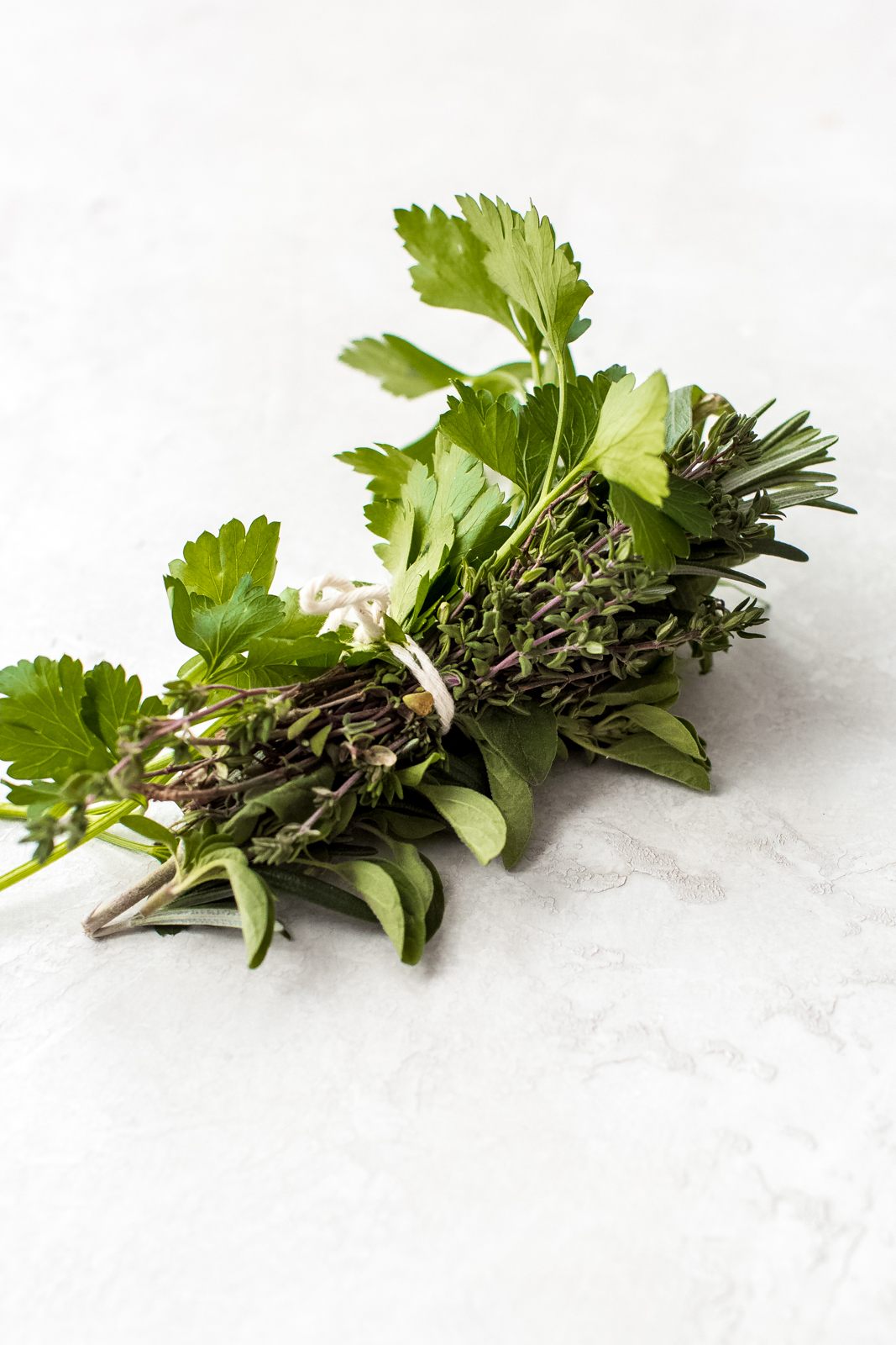 bouquet of fresh herbs tide with kitchen twine on grey surface