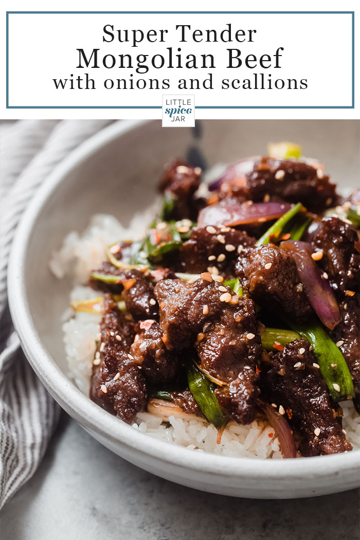 a close up of Mongolian Beef on a bed of rice