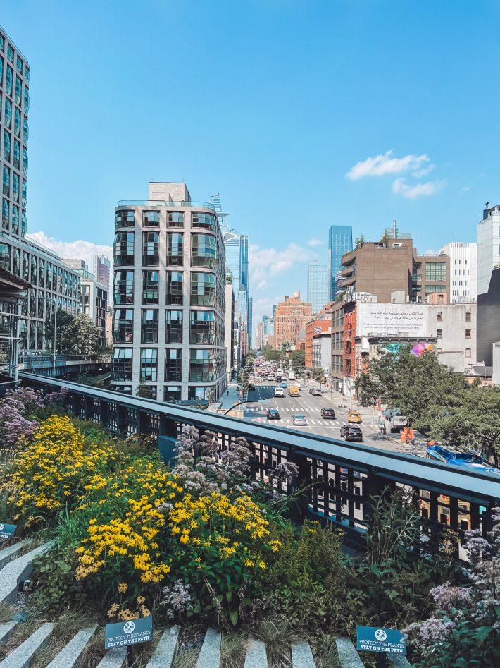 Picture from the Highline