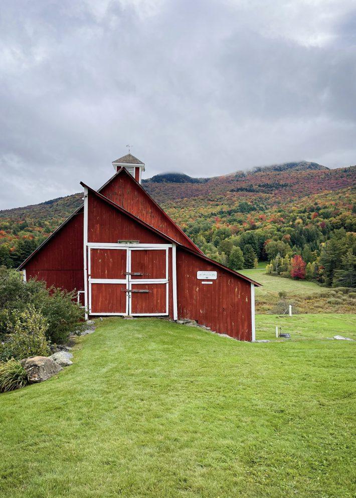 Grand view Farms